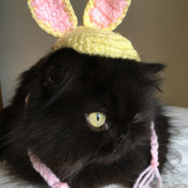 Bunny Hat Couture